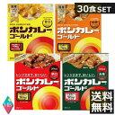 大塚 ボンカレーゴールド(30個)1ケース(30食)のまとめ買い!