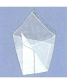 ソフラガゼロンX 2号 300枚入 一般医療機器 - 竹虎