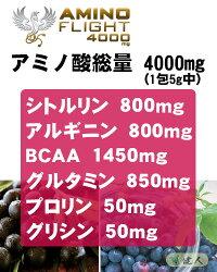 アミノフライト4000mg(AMINOFLIGHT)5g×50本入【ZEROBASE】(3)