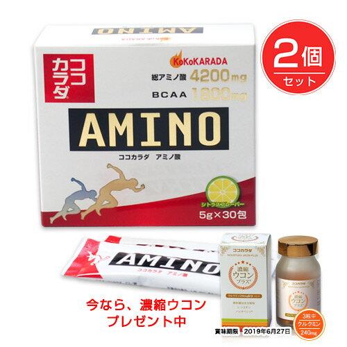 ココカラダ アミノ酸 4200mg 5g×30包×2個セット ※今なら濃縮ウコン90カプセル プレゼント - コーワリミテッド [高含有アミノ酸][BCAA]