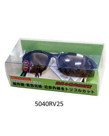 レイケアビジョン サングラス 5040RV25 - メイソウ企画