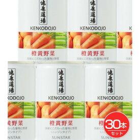 健康道場 果汁入り橙黄野菜 160g×30本入 - サンスター