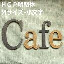 木製 アルファベット・HGP明朝体・Mサイズ(高さ12cm基準)・小文字
