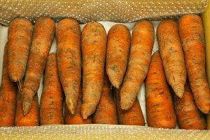 【無肥料・自然栽培】ニンジン3kg 有機栽培でもなく、無肥料無農薬 自然栽培 土付き。 栄養価も高く野菜ジュースにも。北海道産【送料無料】
