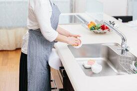 【直送品】【代引き不可】腰痛対策 楽ラクッション クッション 腰痛 腰専用 腰専用クッション 腰痛対策クッション キッチン 皿洗い 台所 洗いもの 立ち仕事 グッズ