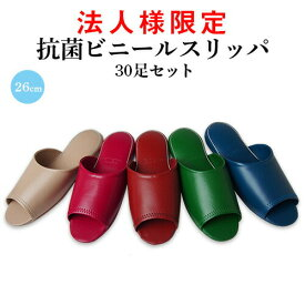 【法人様限定】業務用 ビニールスリッパ 30足セット 26cm S-6A (名入れ可)