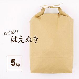 訳ありはえぬき 5kg 山形県 令和2年産 規格外 中米 お米 送料無料(一部地域を除く) 精白米 業務用 安い