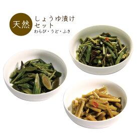 山菜しょうゆ漬セット (わらび・うど・ふき) 漬物 山形県産 山菜加工品 ネコポス 送料無料