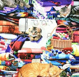 USAコットン Timeless Treasures「猫の仕立て屋さん」/タイムレストレジャー/生地/布/綿/ねこ/ネコ/猫輸入生地/ブランド生地/ミシン/ソーイング/USA