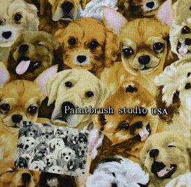 USAコットン Paintbrush studio 「My Pet Family」/犬/ペイントブラッシュ/イヌ/生地/布/綿/輸入生地/ブランド生地/USA/犬柄