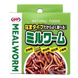 なまタイプだからよく食べる! ミルワーム/おやつ フード 加熱処理 缶詰 ハムスター ハリネズミ モモンガ リス サル 爬虫類 トカゲ NPF