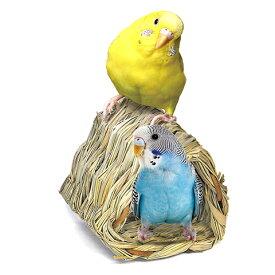 三角ことりトンネル L/おもちゃ わら 天然素材 小鳥 セキセイインコ ピッコリーノ スドー SUDO