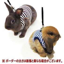 レインボー rabbit ランランハーネス ボーダー/うさぎ ウサギ ラビット お散歩 リード ストライプ 胴輪 Rainbow