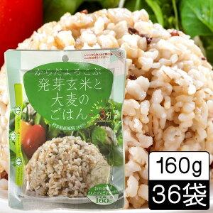 (103)発芽玄米と大麦のごはん 160g×36袋 レトルトパック レンジで3分お手軽 雑穀ごはん