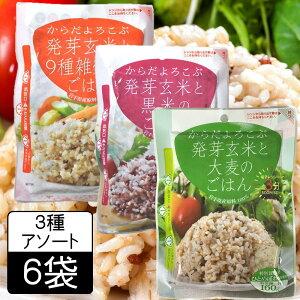 (55)【選べる6袋】 発芽玄米と大麦のごはん 160g×6袋(9種雑穀・黒米・大麦) レトルトパック レンジで3分お手軽 雑穀ごはん
