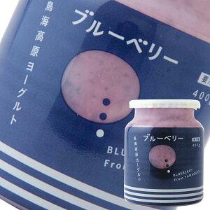 (299)山形県酒田から作りたてを!【1個】鳥海高原フルーツヨーグルト《ブルーベリー》 400g