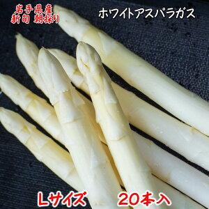 (387)2020冬12月1日発売冬採り ホワイトアスパラガス 白い果実(Lサイズ)20本 期間限定