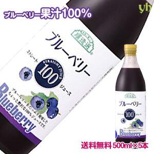 (55)【送料無料】ブルーベリージュース 500ml×5本