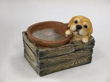 【置物】箱型ポット子犬_01