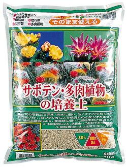 サボテン・多肉植物の培養土約10L