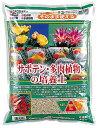 サボテン・多肉植物の培養土 約10L[g6]【クーポン配布店舗】