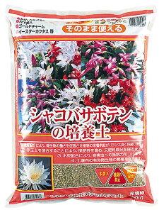 シャコバサボテンの培養土約10L