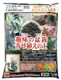 趣味の盆栽寄せ植えの土