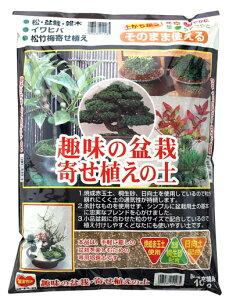 趣味の盆栽寄せ植えの土 約10L[g7.5]【クーポン配布店舗】
