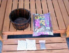 F−1 パンジー・ペチュニアの土と浅型小鉢セット[g4]【クーポン配布店舗】