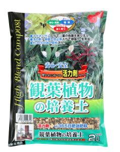 SCG観葉植物の培養土 約2L[g0.5]【クーポン配布店舗】