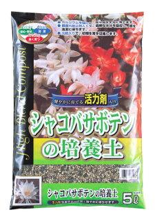 SCGシャコバサボテンの培養土約5L