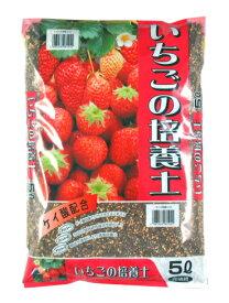 いちごの培養土 約5L[g2.5]【クーポン配布店舗】
