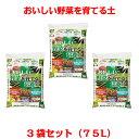 【送料無料】おいしい!野菜を育てる培養土 25L×3袋セット[g27]【ポイント10倍 3月末日まで】【クーポン配布店舗】