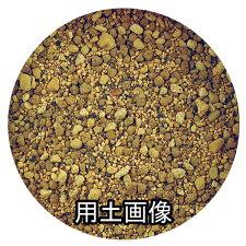観音竹の培養土約10L[g7]