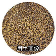 バラの培養土約5L[g2.5]
