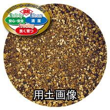 SCGシャコバサボテンの培養土約5L[g3]