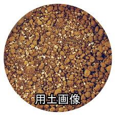 ラベンダー・ハーブの培養土約10L[g6.5]