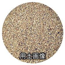 サボテン培養土約5L[g3]