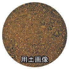 ハーブ培養土約5L[g2.5]