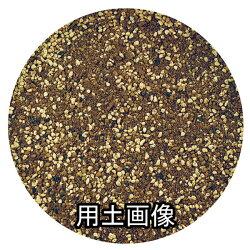 さし芽・種まきの土約10L[g6]