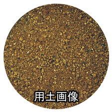シャコバサボテンの培養土約10L[g6]