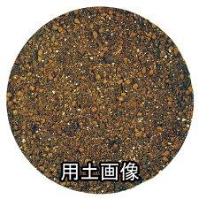 ハンギングの培養土約10L[g5]