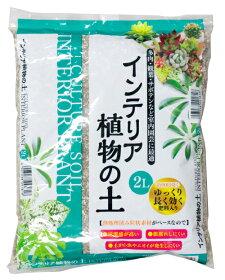 インテリア植物の土約2L[g1.3]【クーポン配布店舗】