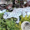 クリップホルダー レプティルスマグ LEOPARD GECKO ヒョウモントカゲモドキ ホワイト