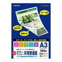 【メール便不可】キョクトウ カラープリンター共用普通紙 A3 250枚入 OFR-HP003A3