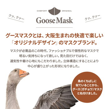 デザインマスクポリリズム(洗える2層立体構造)グースマスク11