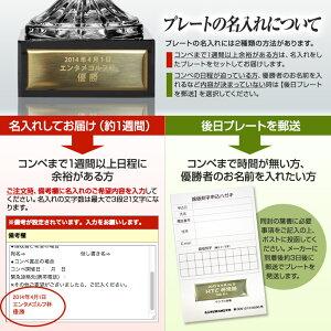 クリスタルトロフィービールジョッキLサイズ(優勝カップ)プレート名入れ無料3
