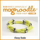Magnoodle 004 1
