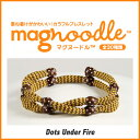 Magnoodle 008 1