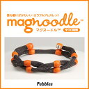 Magnoodle 019 1